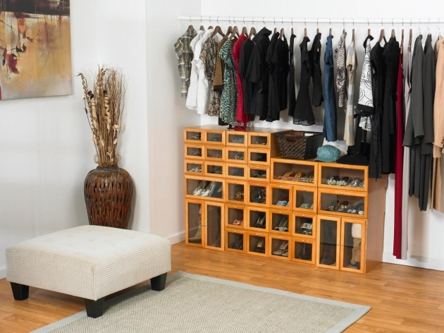 Closet Storage Ideas Shoes Solutions Closet Organizers Picture 64