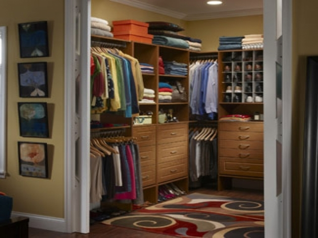 Free Standing Closet Systems Furniture Comfy Closet Organizers Ikea And Wardrobe Ideas Laace Pictures