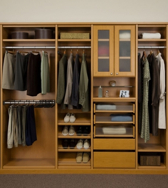 Free Standing Closet Systems Modern Bedroom Idea With Dark Brown Area Rug And Brown Wooden Image