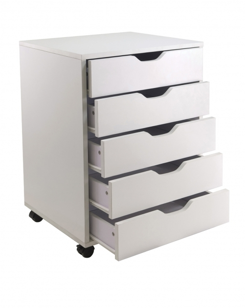 Closet Storage Drawers Top Closet Storage Drawers Home Design Furniture Decorating Lovely Pictures