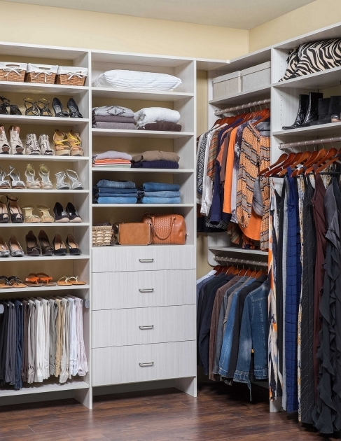 Ideas For Walk In Closet Special Small Walk In Closets Ideas Awesome Design Ideas 3554 Pic