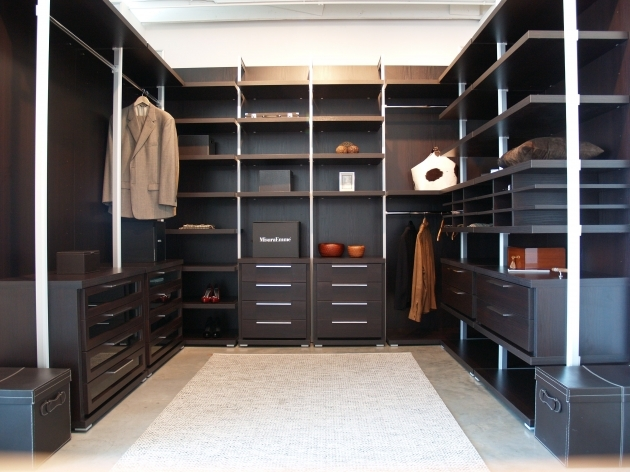 Modular Closet Systems Furniture Fascinating Closet Systems Diy With Modern Design Picture
