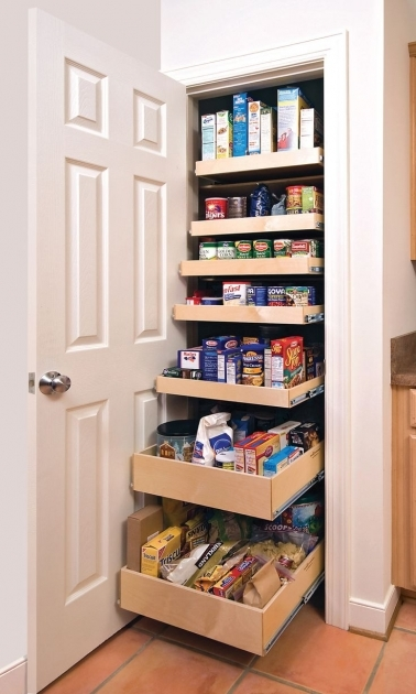 Pantry Closet Organizers 1000 Ideas About Pantry Closet Organization On Pinterest Pantry Pics