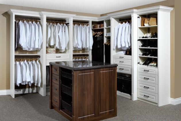 Built In Closet Organizers Built In Closet Systems Home Furnishing Ideas Photo