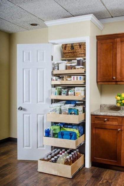 Pantry Closet Systems 17 Best Ideas About Pantry Closet On Pinterest Pantry Ideas Pictures