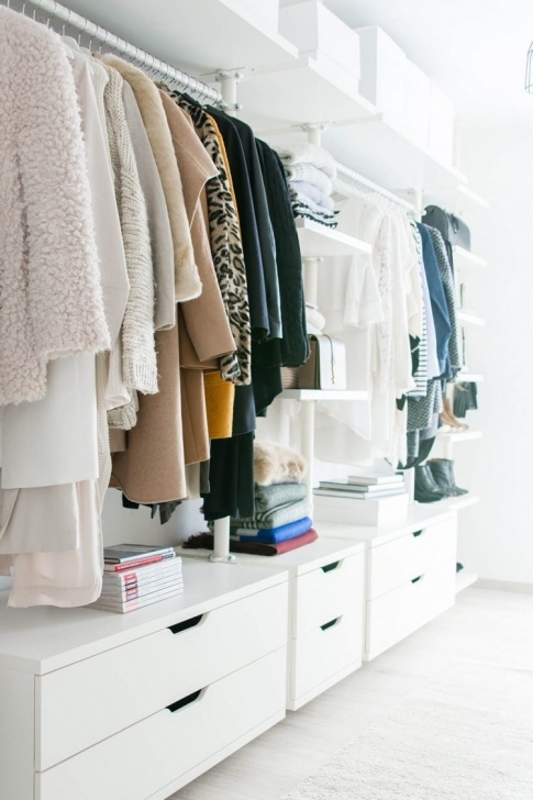 Amazing 75 Cool Walk-In Closet Design Ideas - Shelterness Very Small Walk In Closet Image