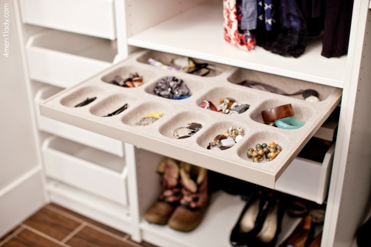 Brilliant Closet Jewelry Organizer Modern Ideas Smart Organization For 2 Closet Accessories Organizers Image