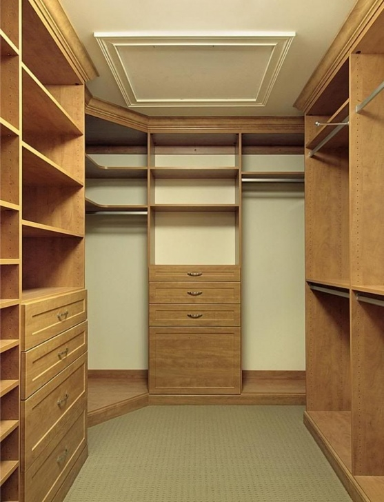 Gorgeous 12 Small Walk In Closet Ideas And Organizer Designs | Small Walk In Remodeling Small Walk In Closet Picture