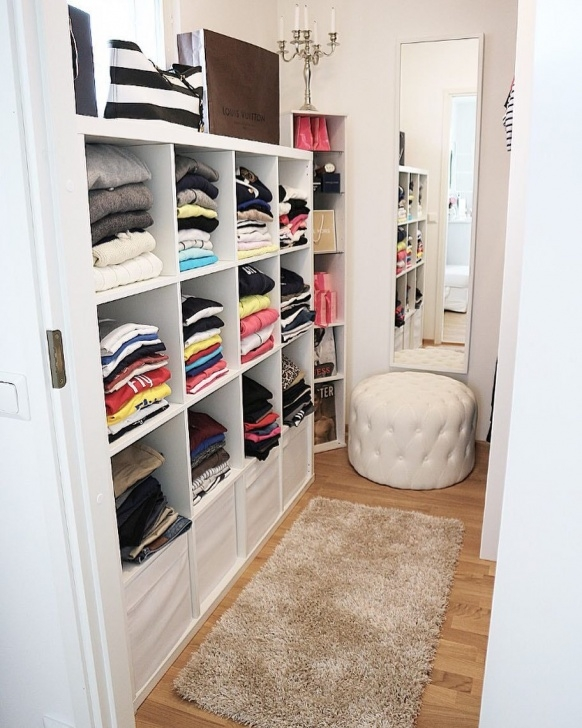 Stylish 21 Best Small Walk-In Closet Storage Ideas For Bedrooms Very Small Walk In Closet Image